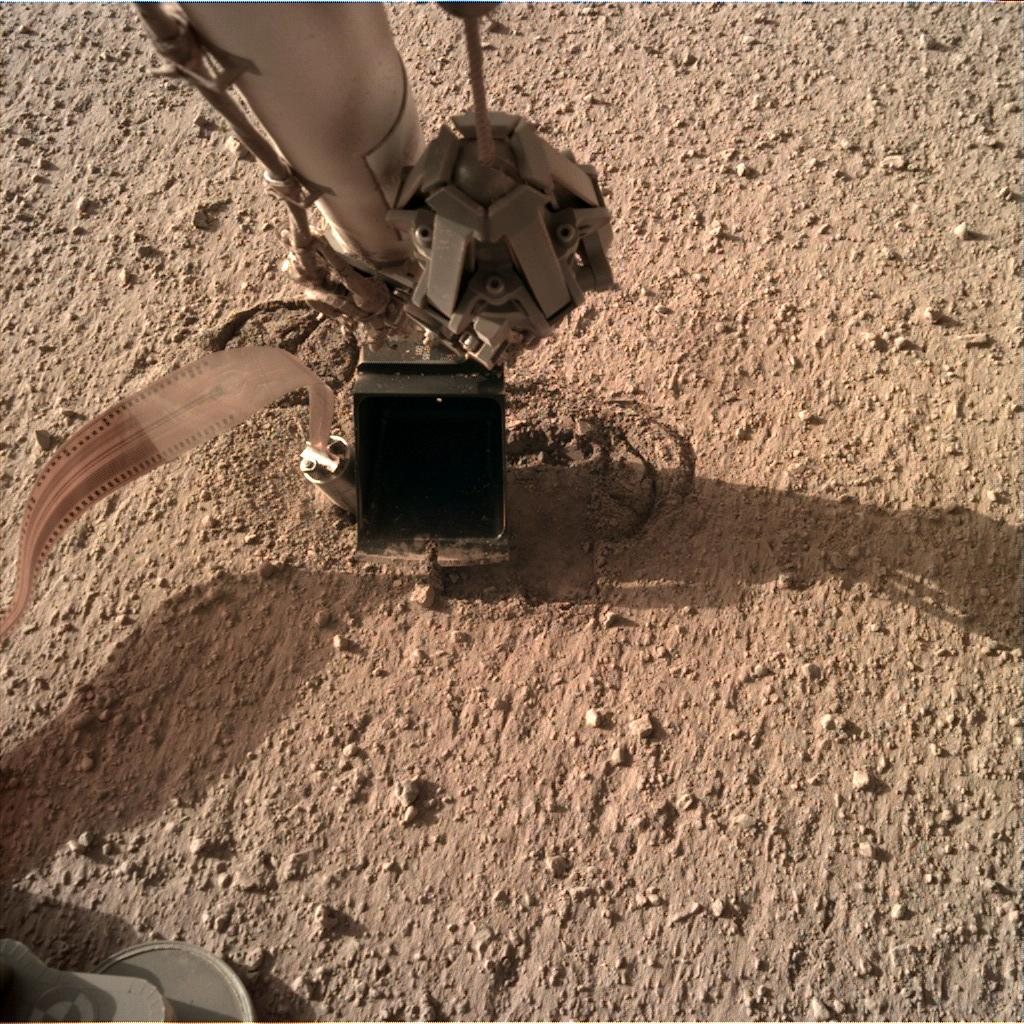 Nasa's Mars lander InSight acquired this image using its Instrument Deployment Camera on Sol 312