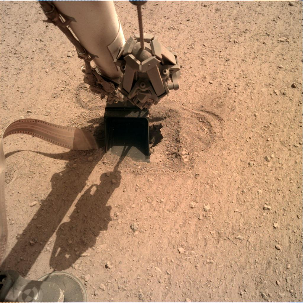 Nasa's Mars lander InSight acquired this image using its Instrument Deployment Camera on Sol 556