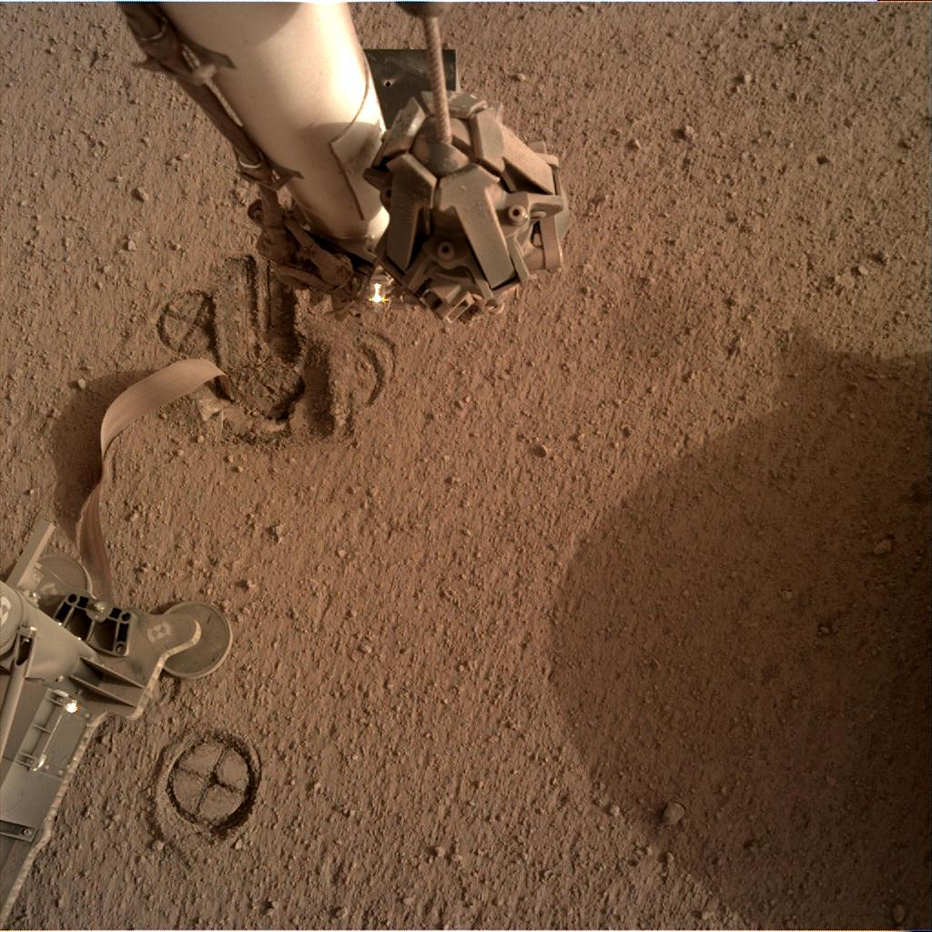 Nasa's Mars lander InSight acquired this image using its Instrument Deployment Camera on Sol 599