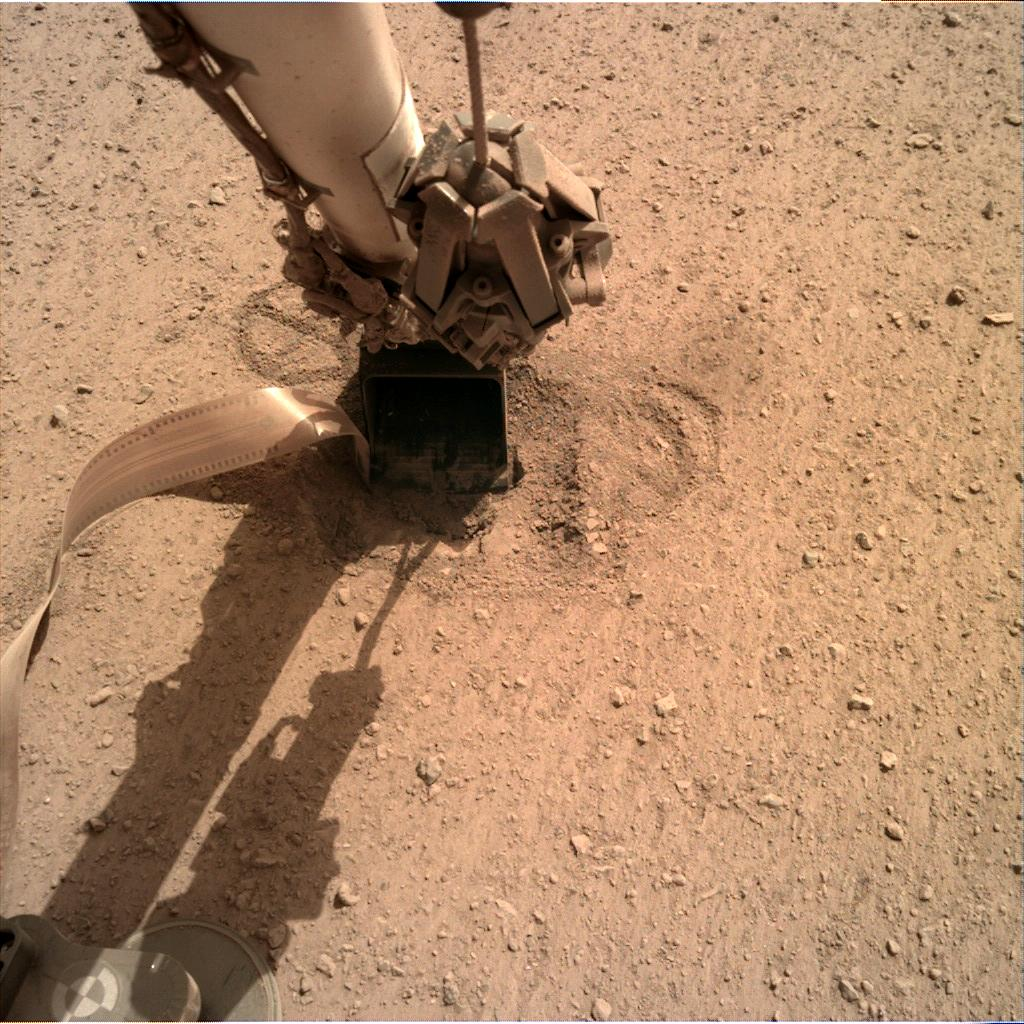 Nasa's Mars lander InSight acquired this image using its Instrument Deployment Camera on Sol 631
