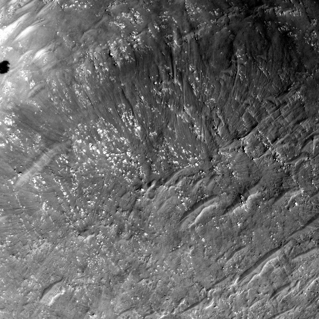 This image was taken by LCAM onboard NASA's Mars rover Perseverance on Sol 0