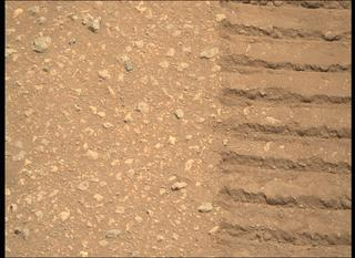 View image taken on Mars, Mars Perseverance Sol 30: Right Mastcam-Z Camera