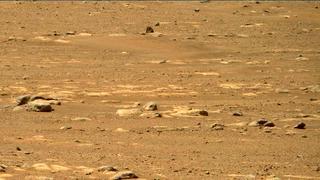 View image taken on Mars, Mars Perseverance Sol 31: Right Mastcam-Z Camera