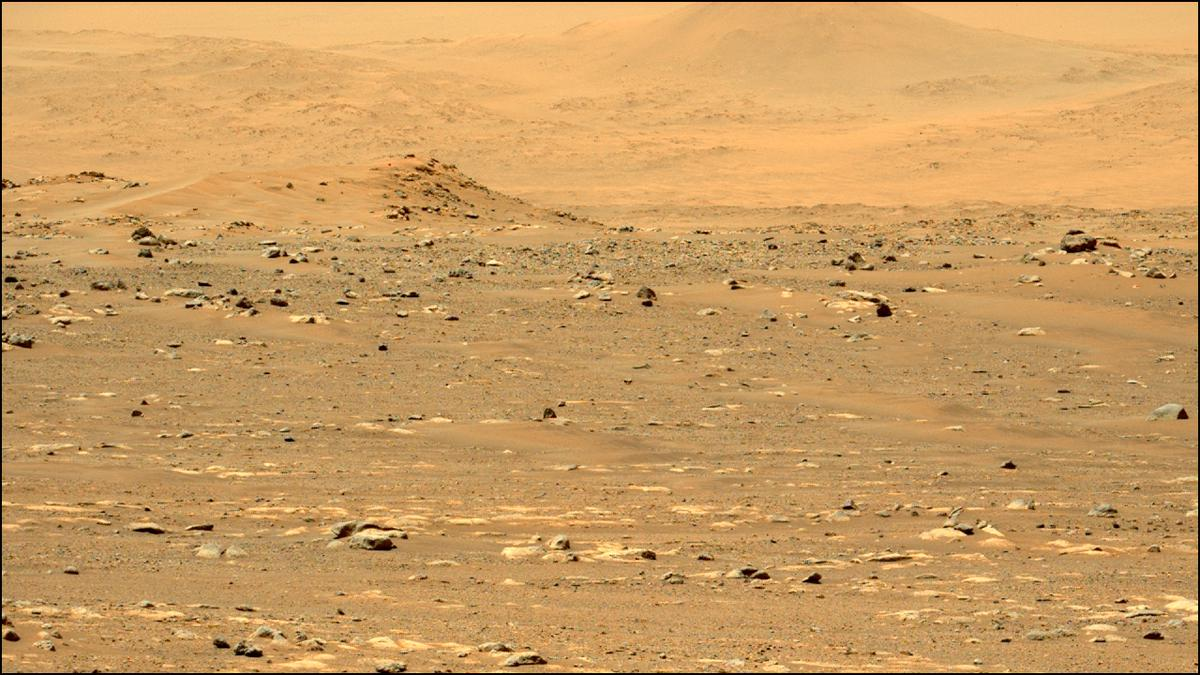 This image was taken by MCZ_LEFT onboard NASA's Mars rover Perseverance on Sol 31