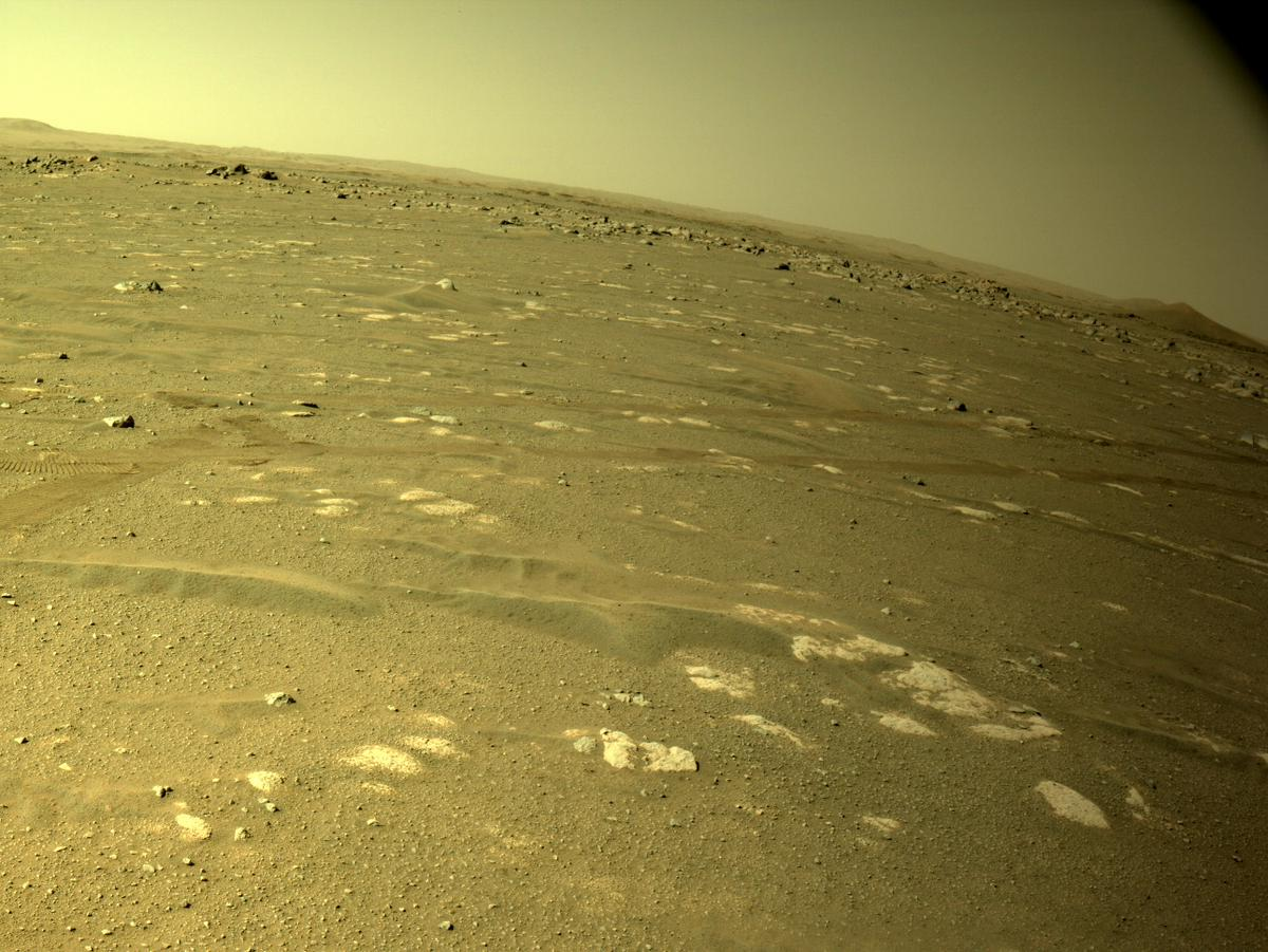 This image was taken by NAVCAM_LEFT onboard NASA's Mars rover Perseverance on Sol 43