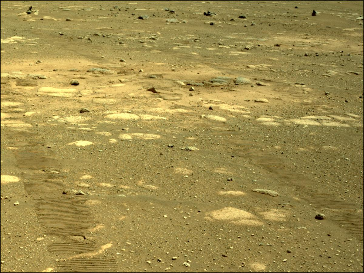 This image was taken by NAVCAM_RIGHT onboard NASA's Mars rover Perseverance on Sol 44