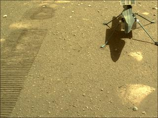 View image taken on Mars, Mars Perseverance Sol 44: Right Navigation Camera (Navcam)