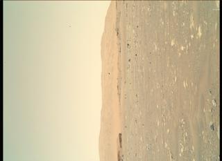 View image taken on Mars, Mars Perseverance Sol 45: WATSON Camera