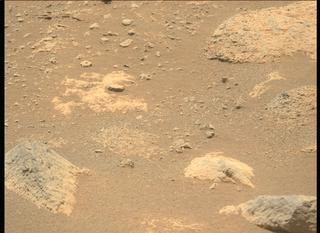 View image taken on Mars, Mars Perseverance Sol 74: Left Mastcam-Z Camera