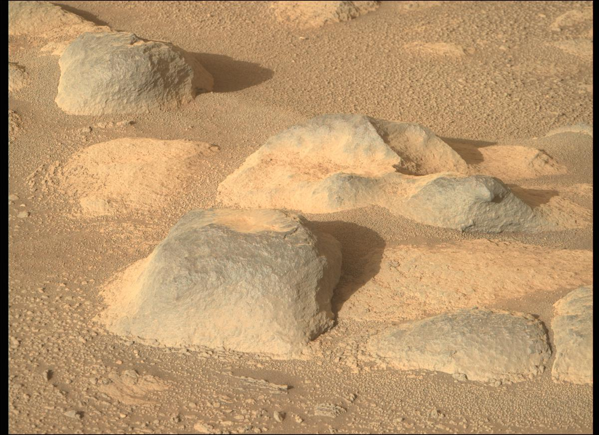 This image was taken by MCZ_RIGHT onboard NASA's Mars rover Perseverance on Sol 82