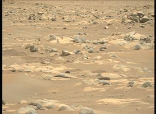 View image taken on Mars, Mars Perseverance Sol 96: Left Mastcam-Z Camera