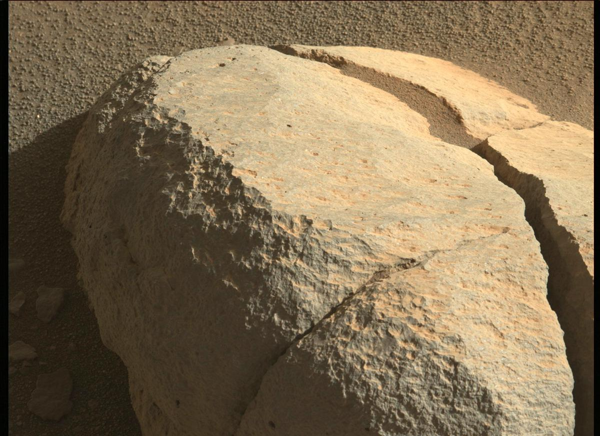 This image was taken by MCZ_LEFT onboard NASA's Mars rover Perseverance on Sol 99