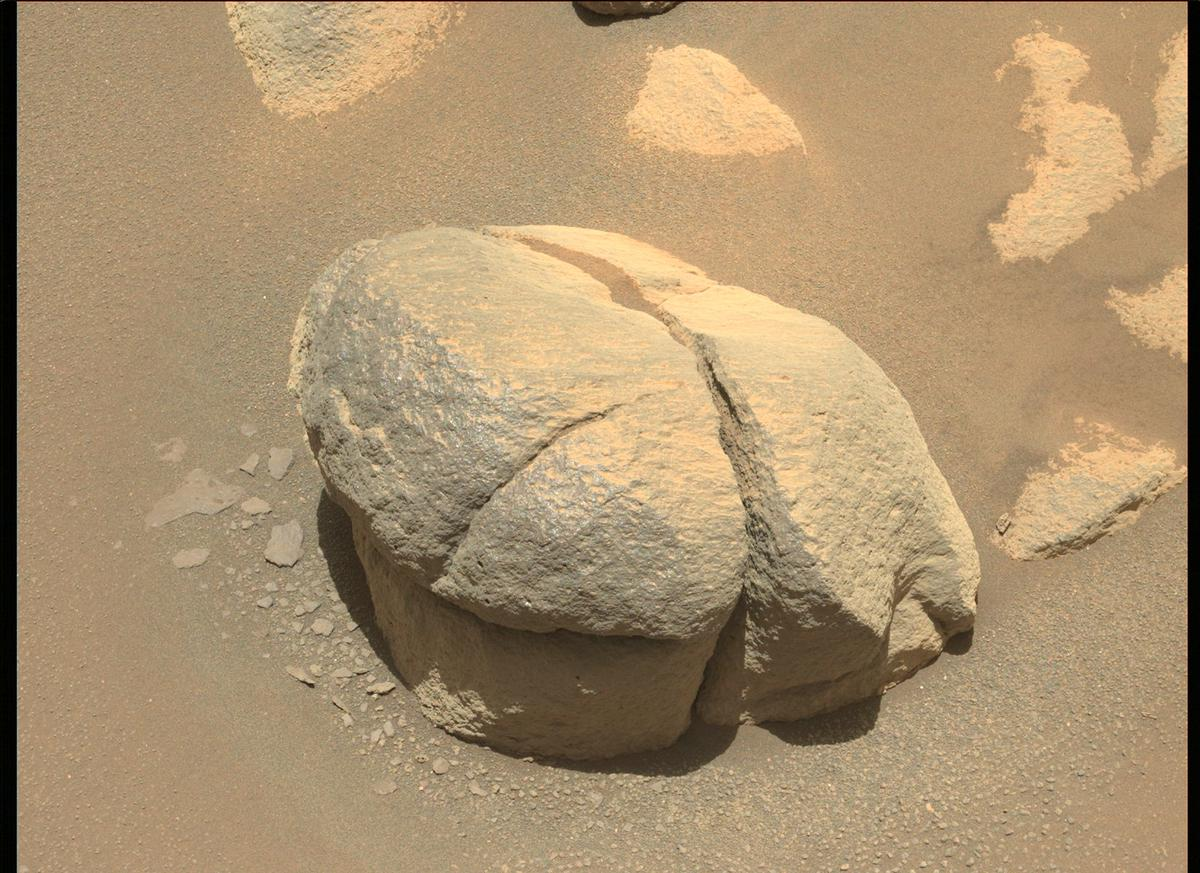 This image was taken by MCZ_LEFT onboard NASA's Mars rover Perseverance on Sol 102