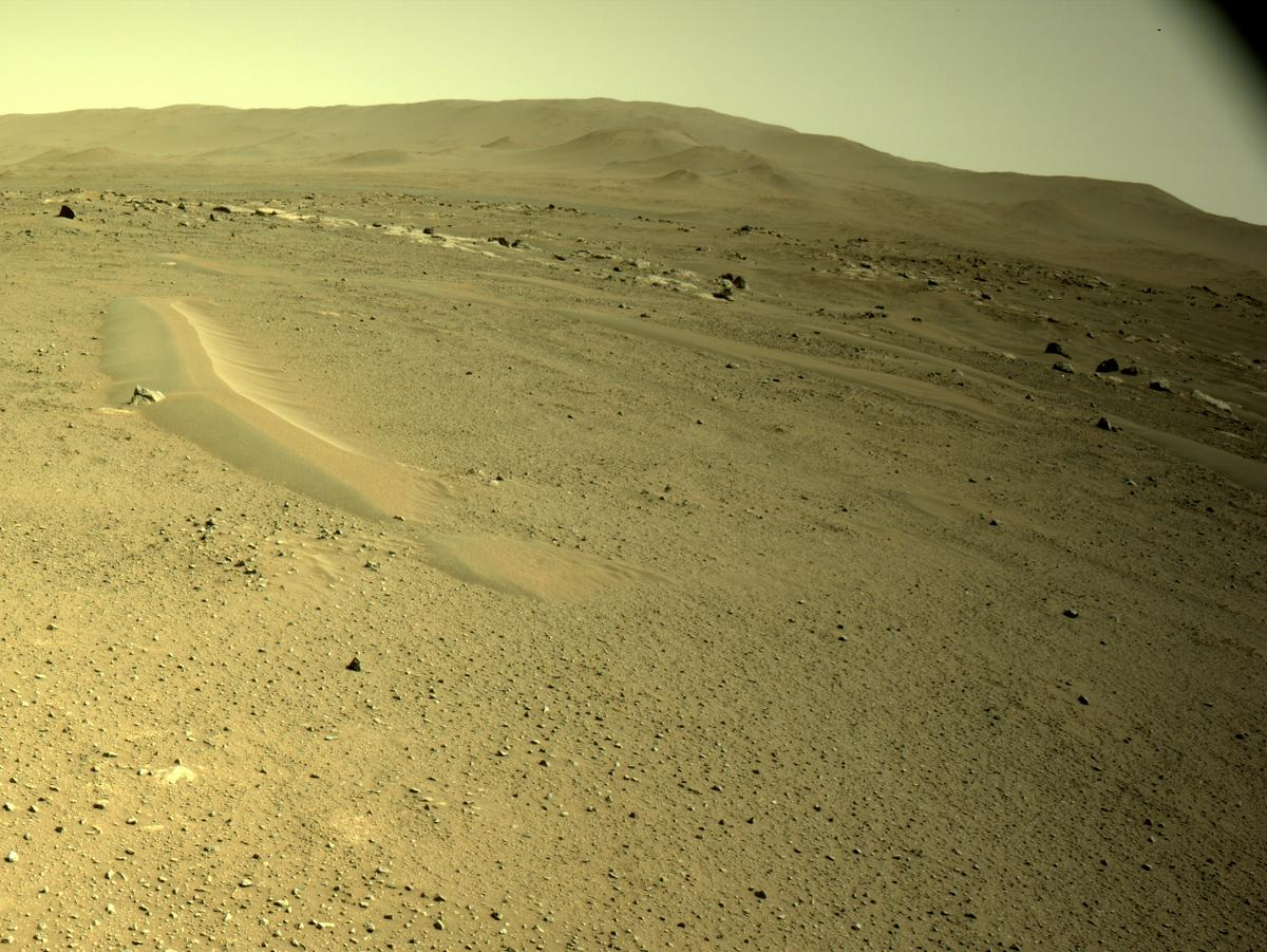 This image was taken by NAVCAM_RIGHT onboard NASA's Mars rover Perseverance on Sol 110
