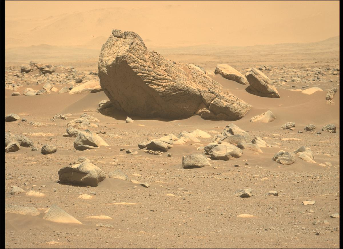 This image was taken by MCZ_LEFT onboard NASA's Mars rover Perseverance on Sol 110