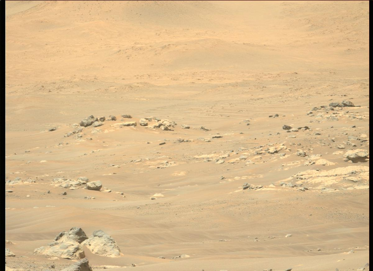 This image was taken by MCZ_LEFT onboard NASA's Mars rover Perseverance on Sol 111