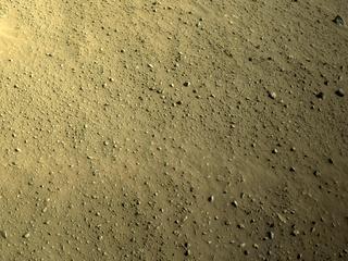 View image taken on Mars, Mars Perseverance Sol 113: Right Navigation Camera (Navcam)