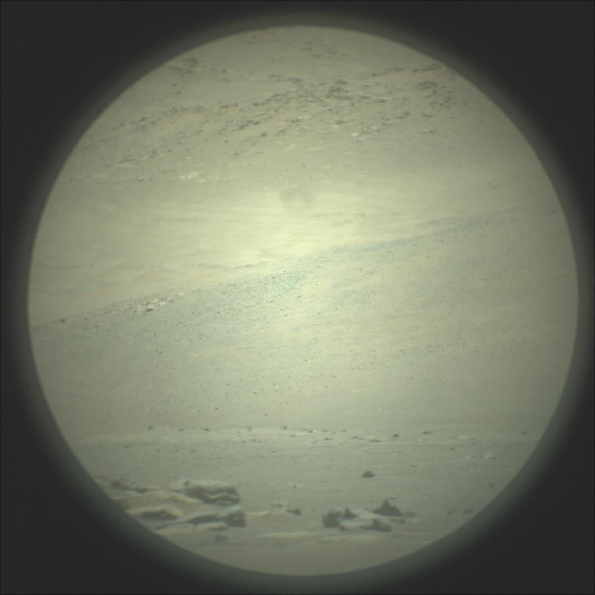 This image was taken by SUPERCAM_RMI onboard NASA's Mars rover Perseverance on Sol 113