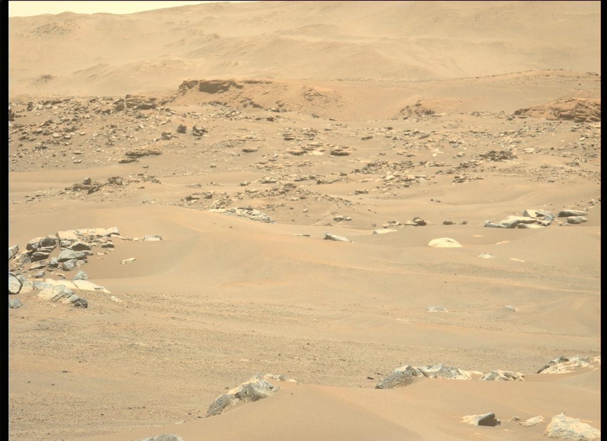 This image was taken by MCZ_LEFT onboard NASA's Mars rover Perseverance on Sol 113