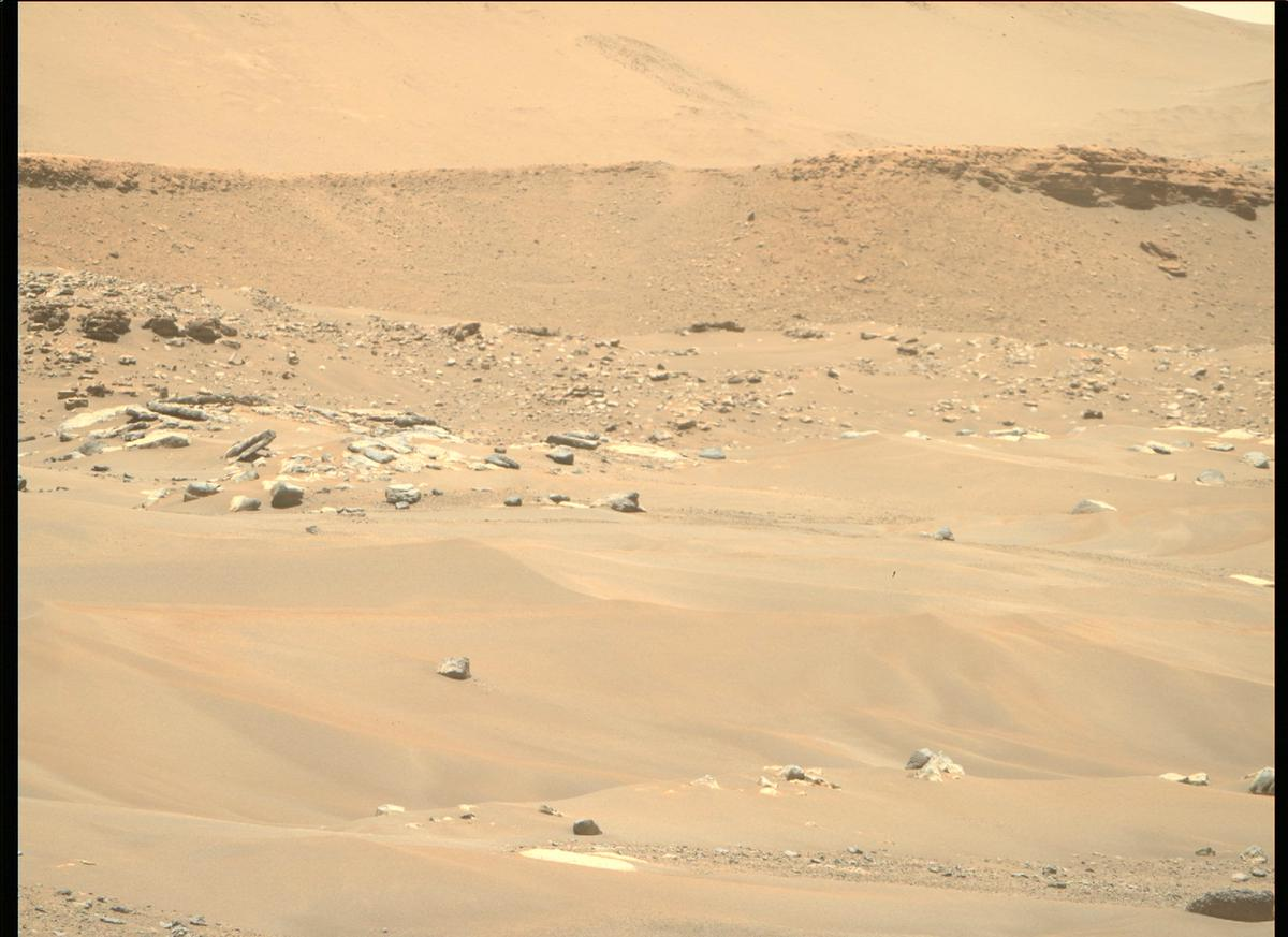This image was taken by MCZ_RIGHT onboard NASA's Mars rover Perseverance on Sol 113