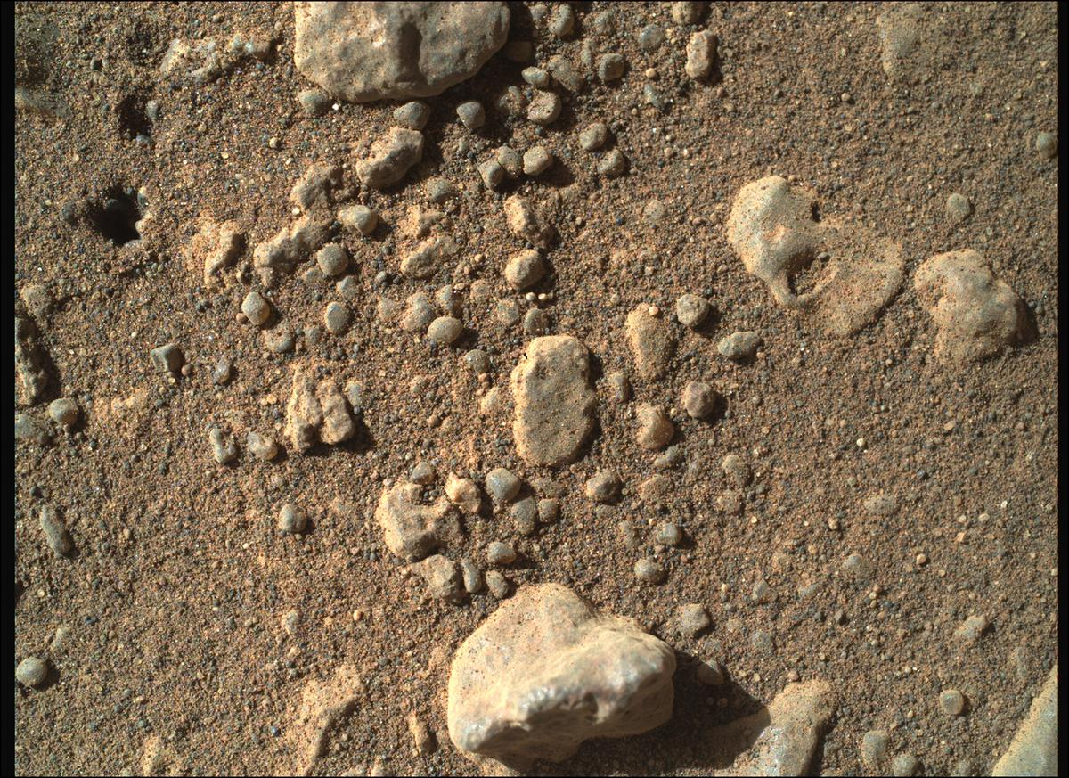 This image was taken by SHERLOC_WATSON onboard NASA's Mars rover Perseverance on Sol 115