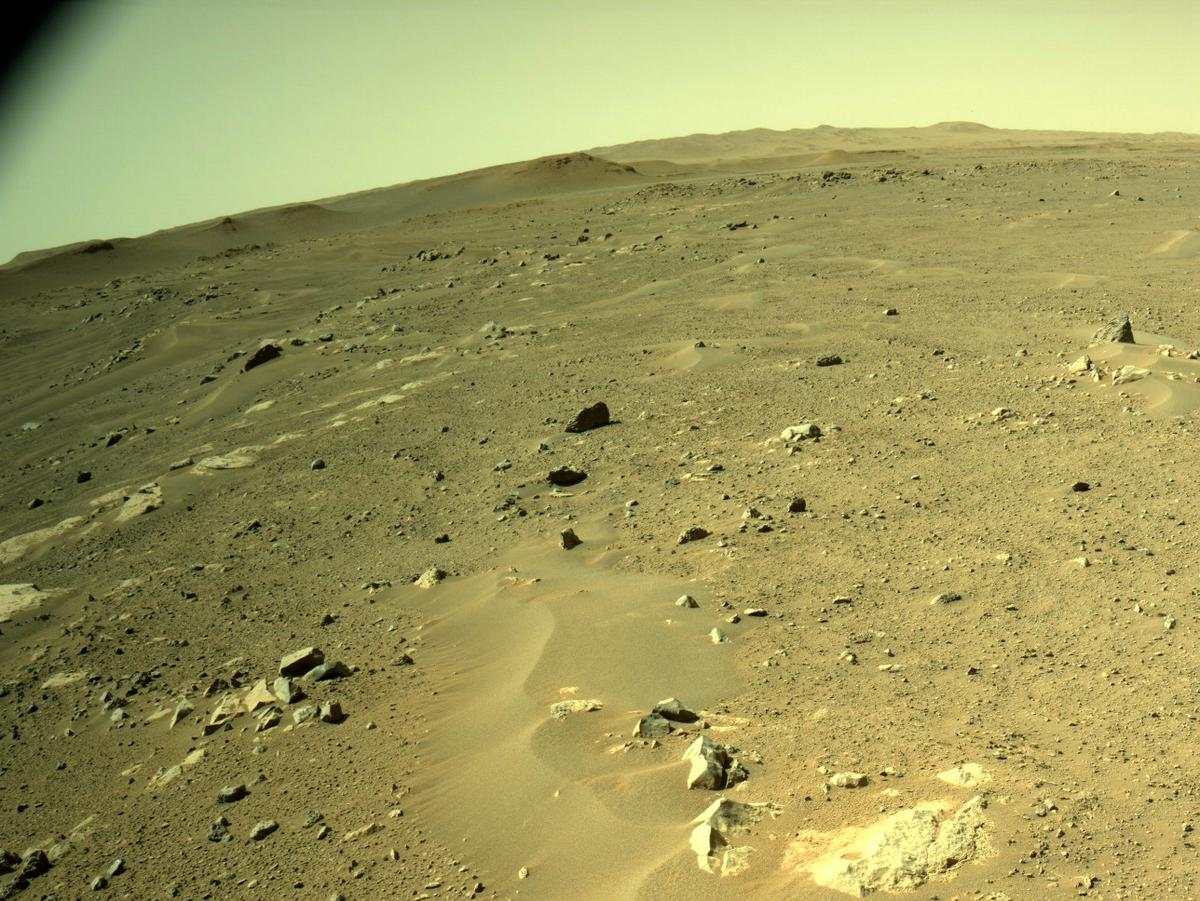This image was taken by NAVCAM_LEFT onboard NASA's Mars rover Perseverance on Sol 116