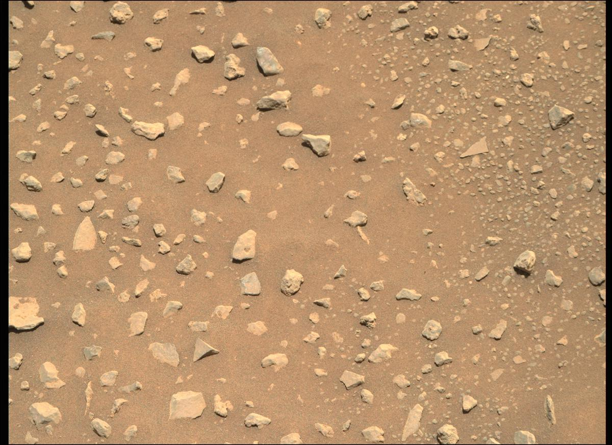 This image was taken by MCZ_RIGHT onboard NASA's Mars rover Perseverance on Sol 117