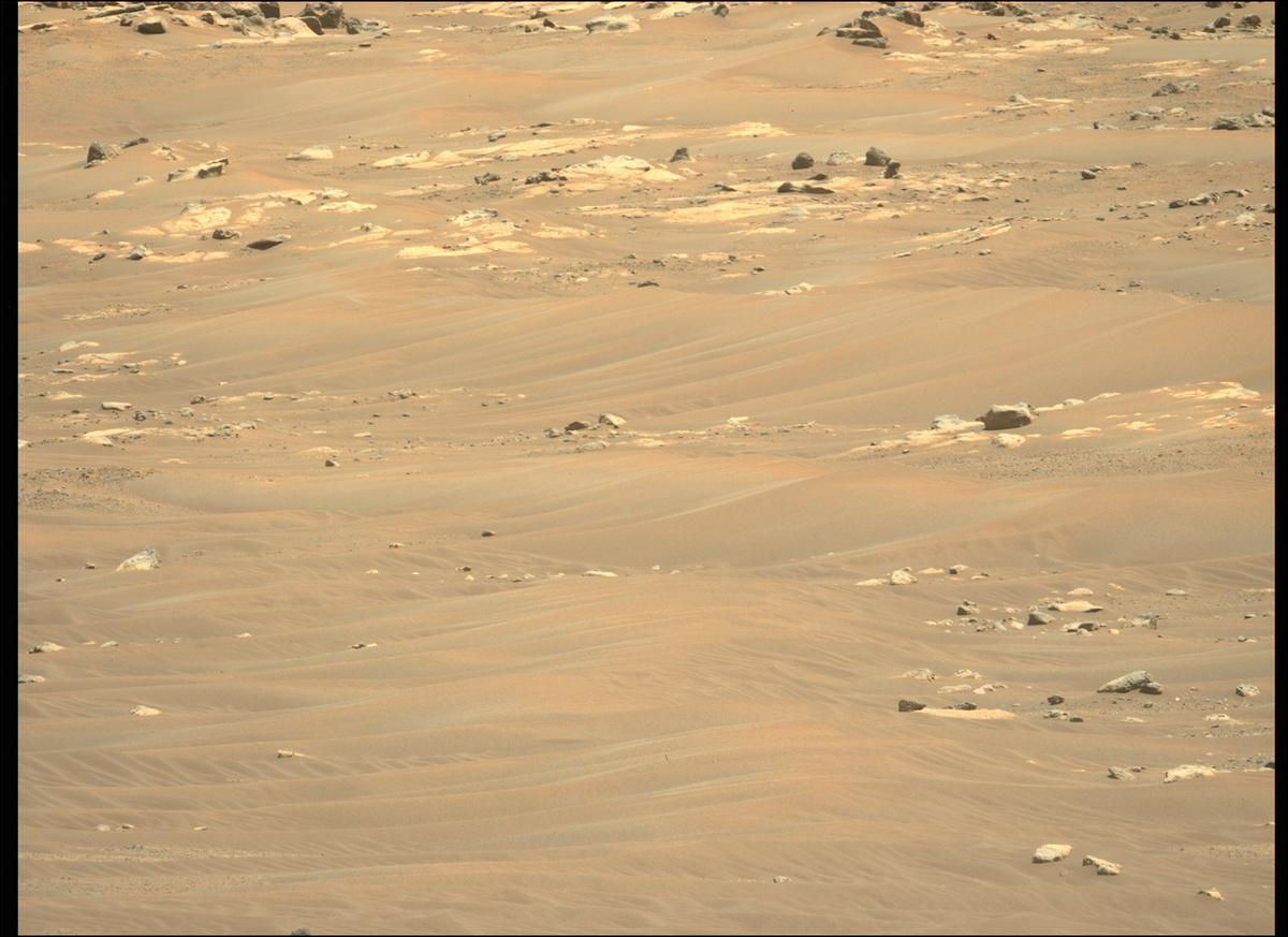 This image was taken by MCZ_LEFT onboard NASA's Mars rover Perseverance on Sol 118