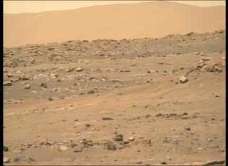 View image taken on Mars, Mars Perseverance Sol 143: Right Mastcam-Z Camera