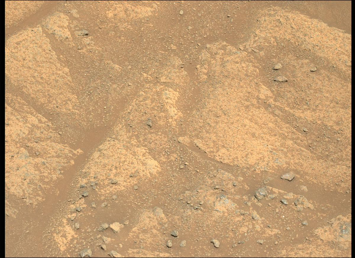 This image was taken by MCZ_LEFT onboard NASA's Mars rover Perseverance on Sol 146
