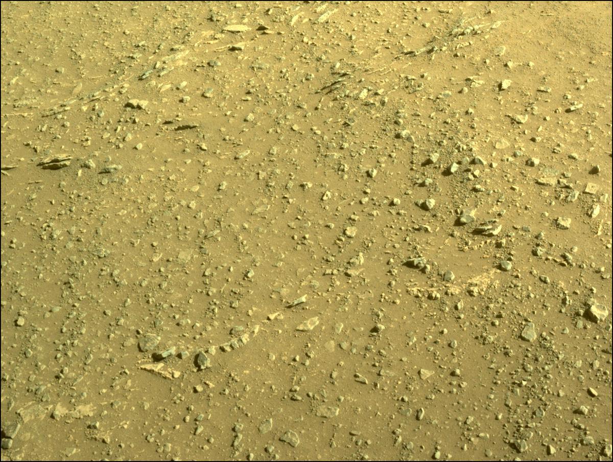 Mars Rover Photo #865301