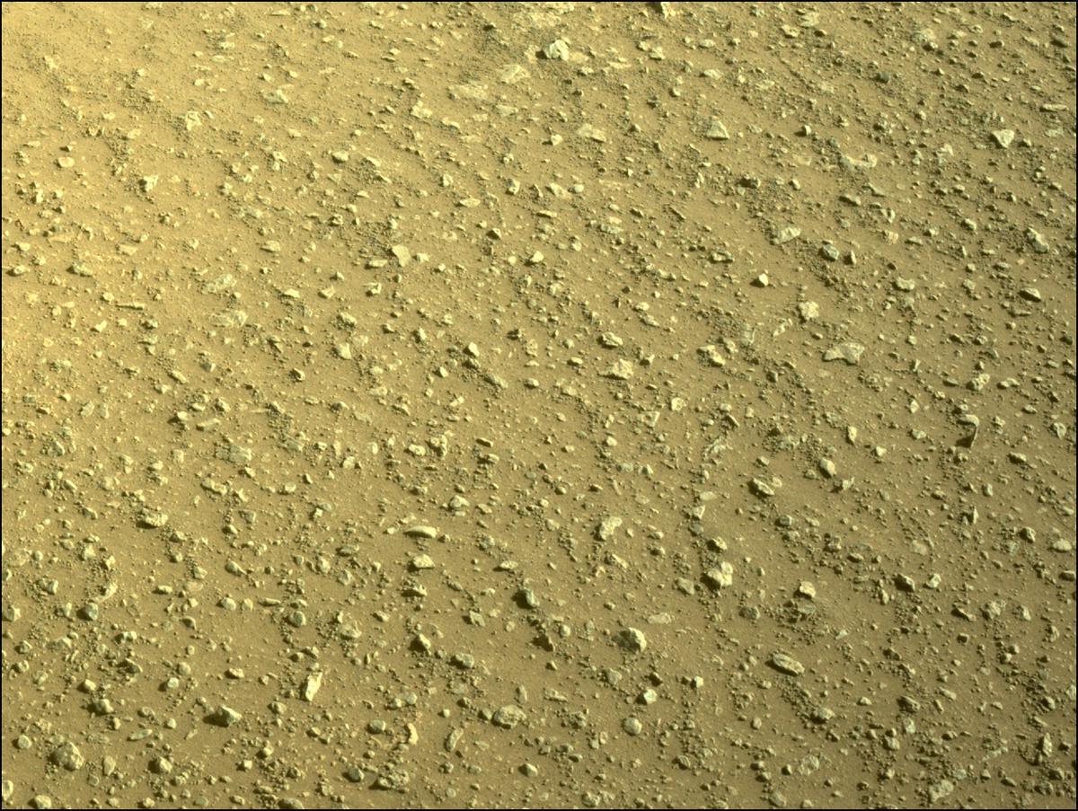 Mars Rover Photo #865302