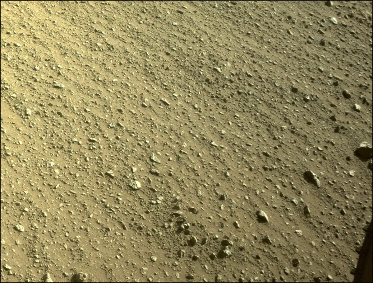 Mars Rover Photo #865303
