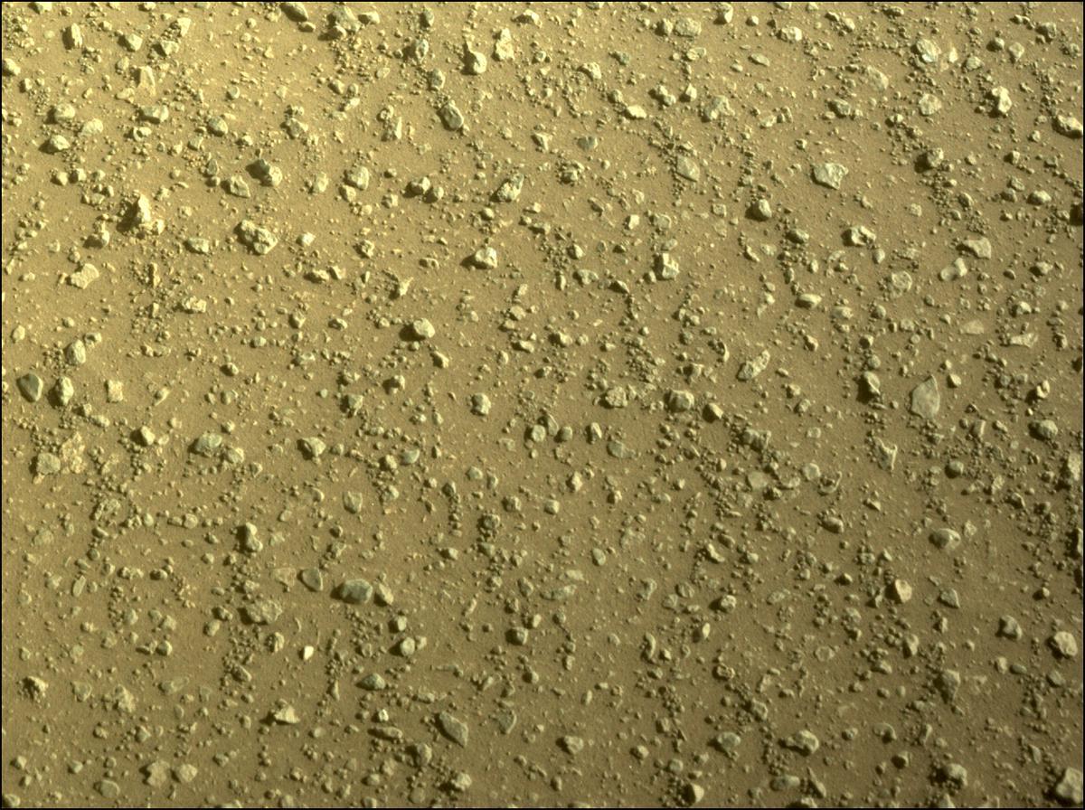 Mars Rover Photo #865306