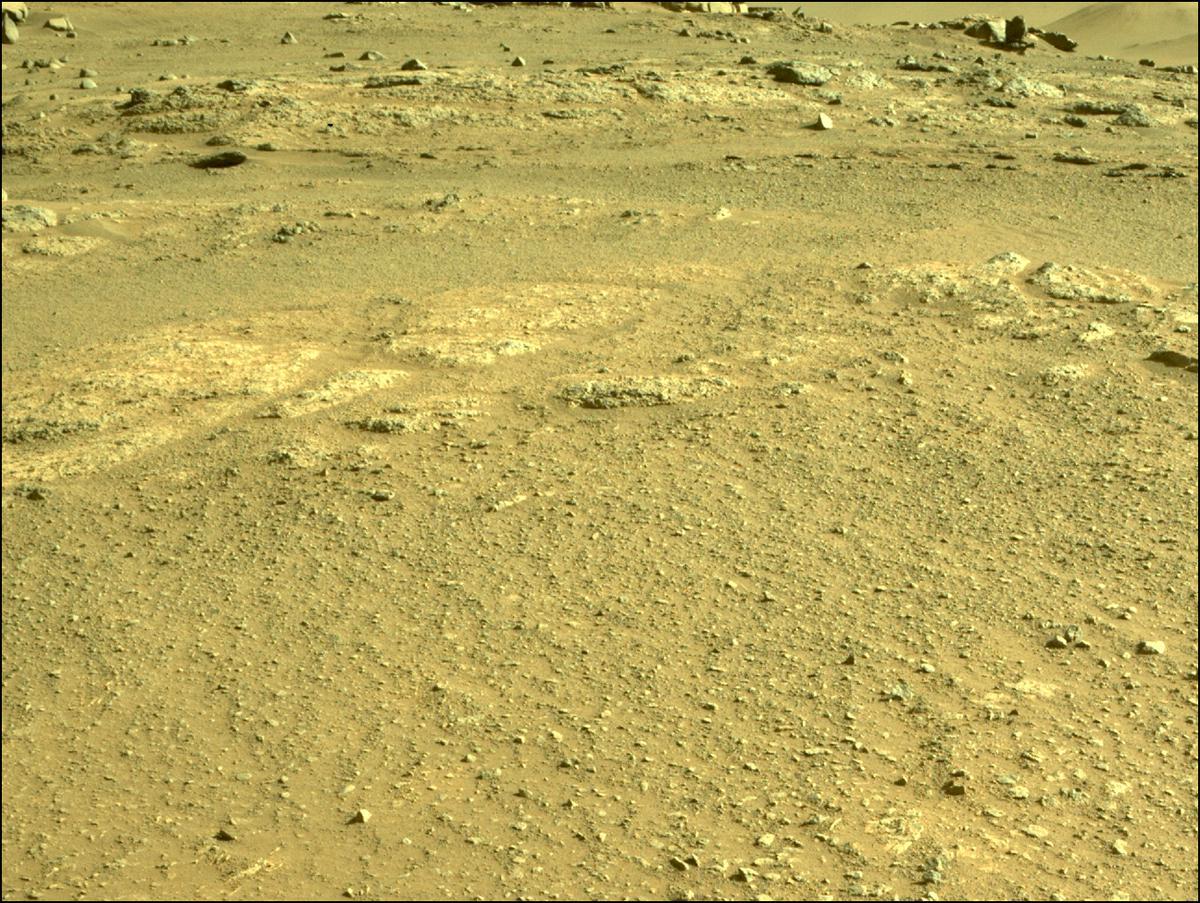 Mars Rover Photo #865321