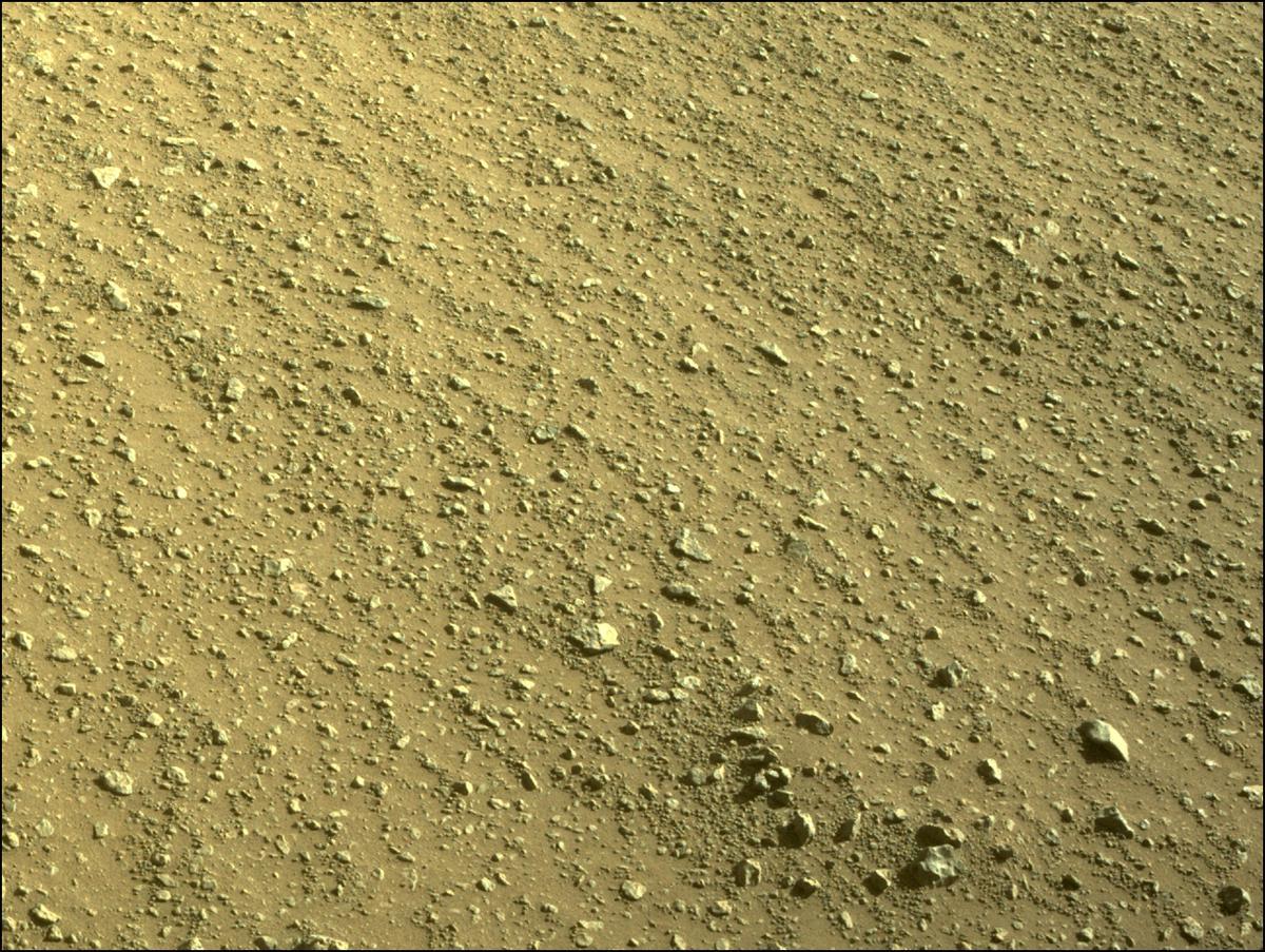 Mars Rover Photo #865326