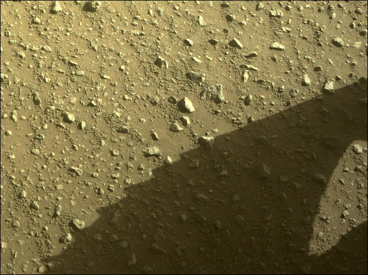 Mars Rover Photo #865330