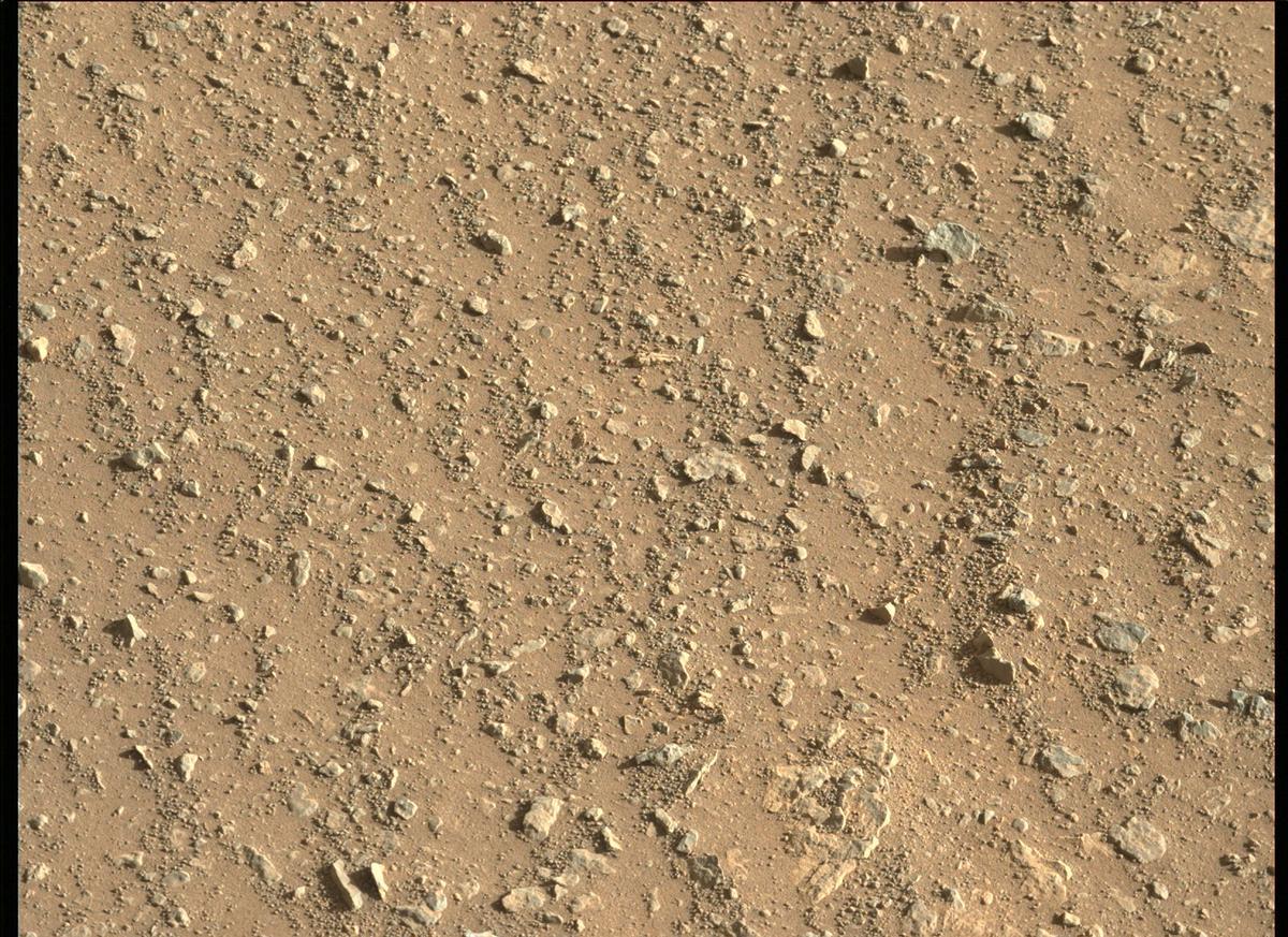 Mars Rover Photo #865337