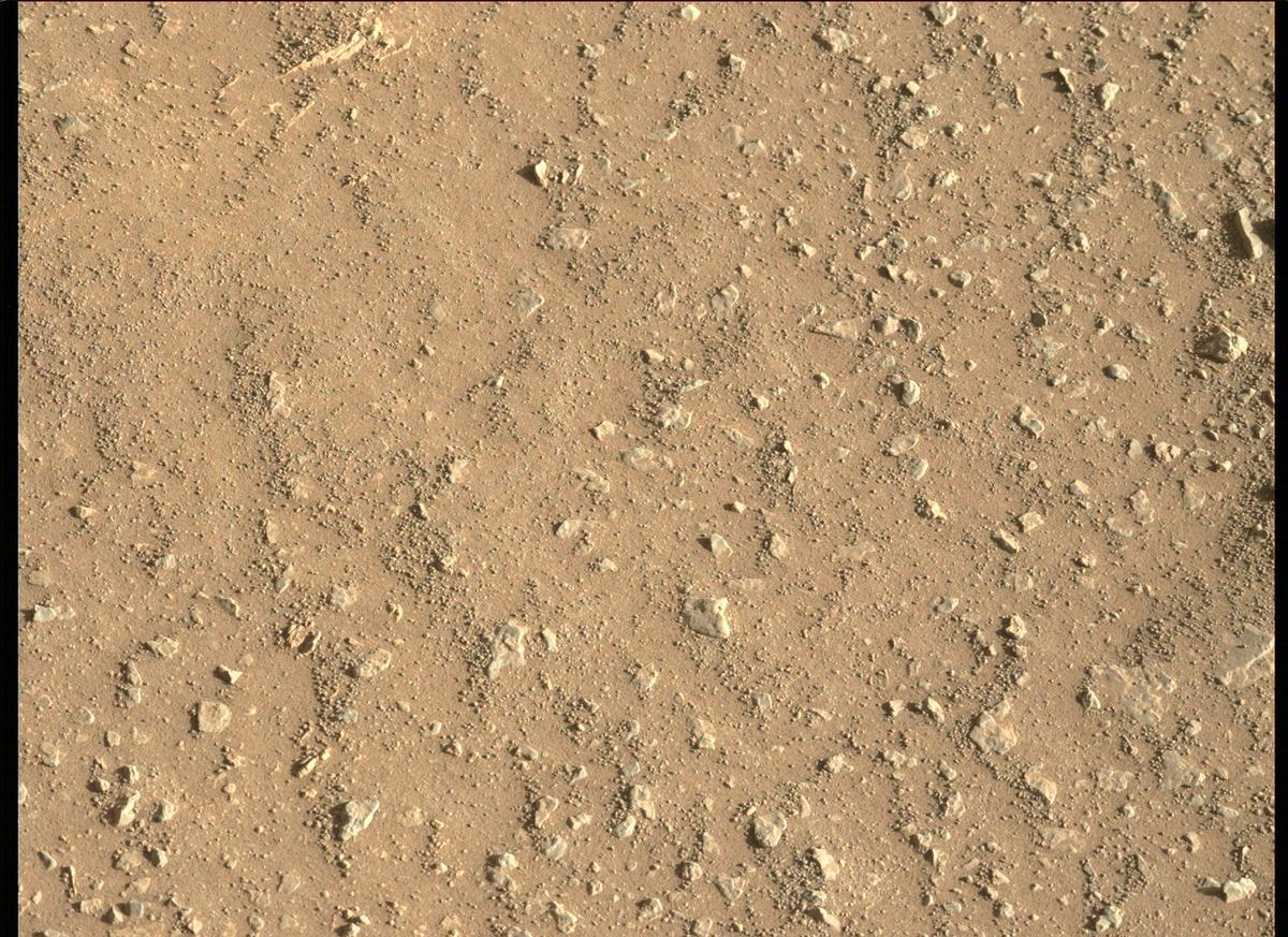Mars Rover Photo #865228