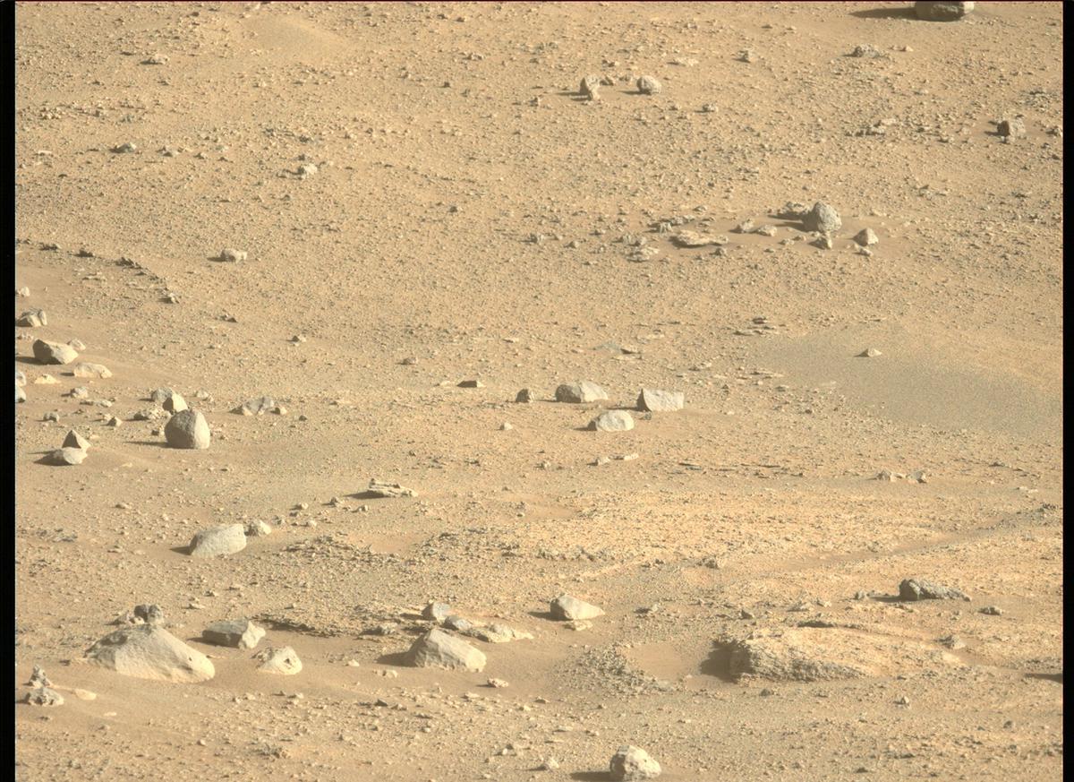 Mars Rover Photo #865246