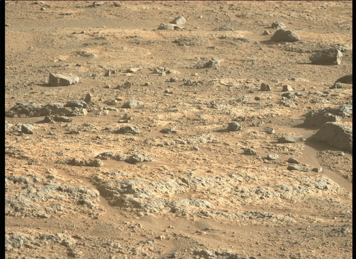 Mars Rover Photo #865252