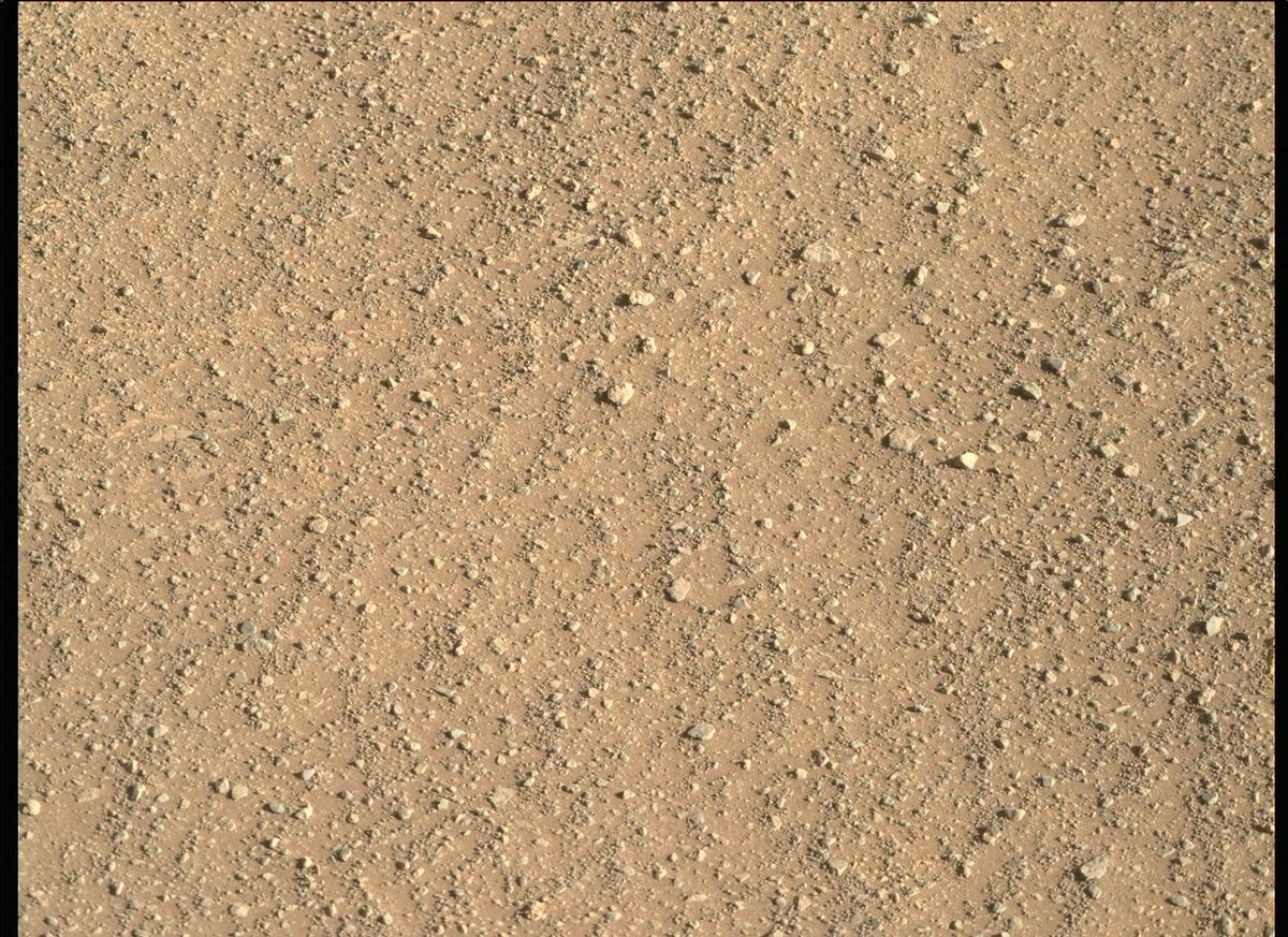 Mars Rover Photo #865341