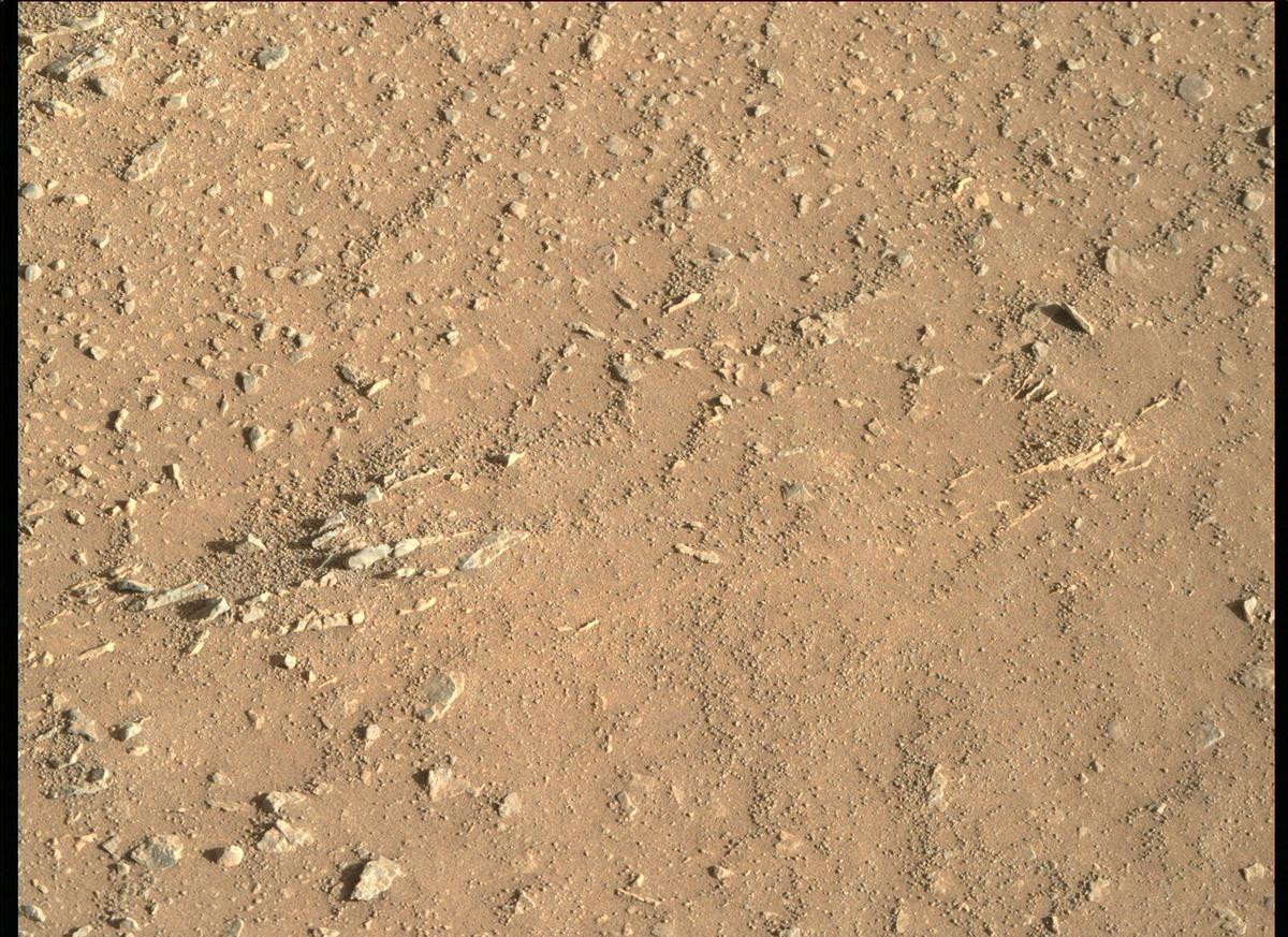 Mars Rover Photo #865275