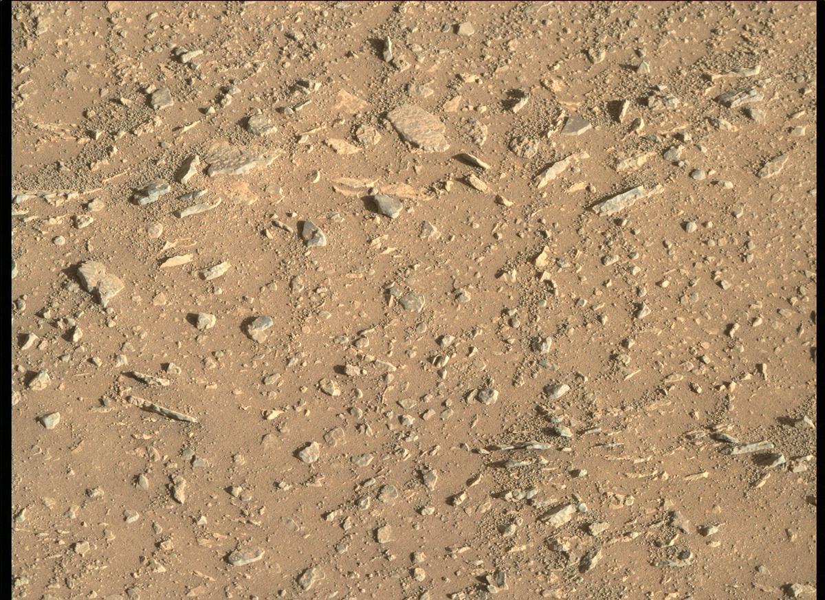 Mars Rover Photo #865276