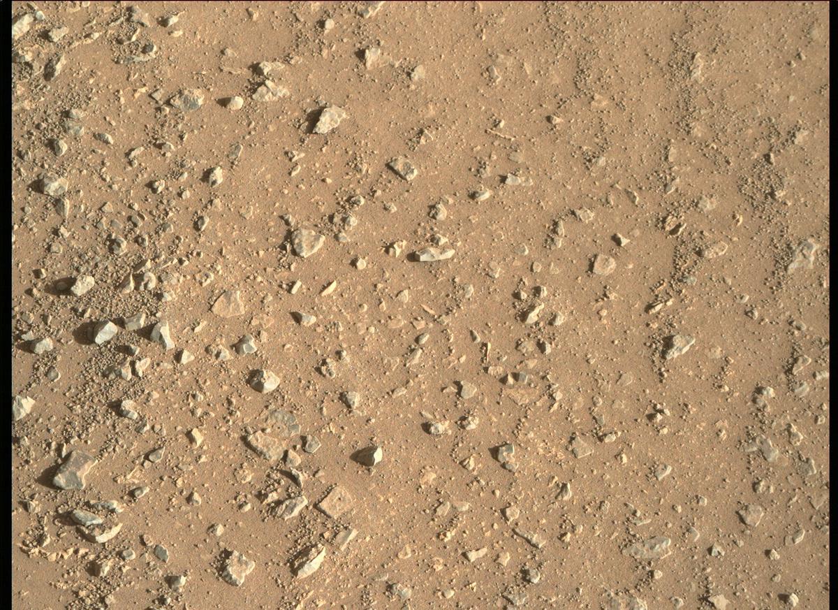 Mars Rover Photo #865282