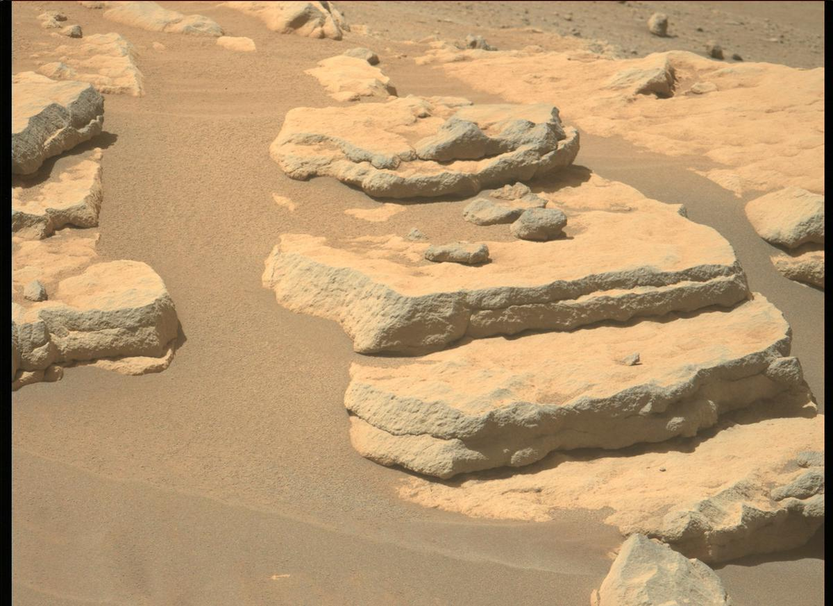This image was taken by MCZ_LEFT onboard NASA's Mars rover Perseverance on Sol 204