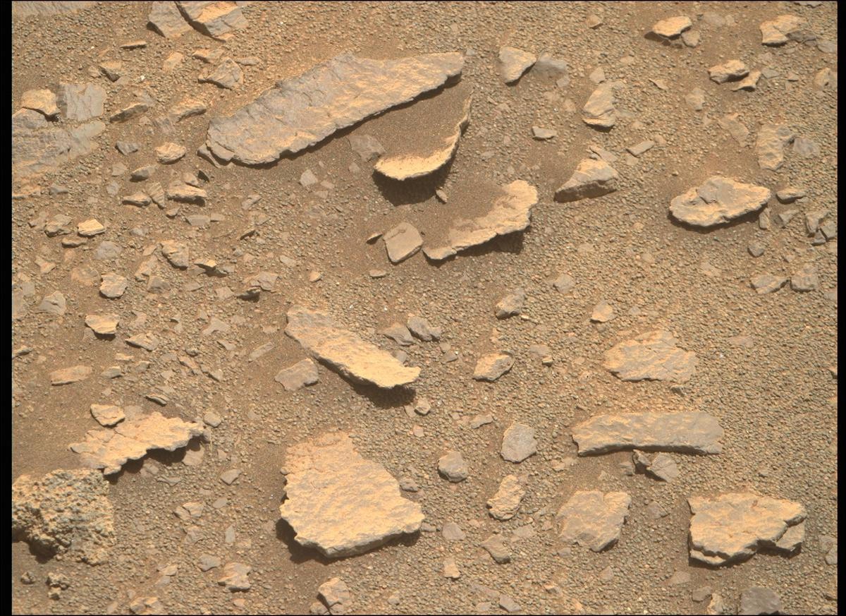 This image was taken by MCZ_RIGHT onboard NASA's Mars rover Perseverance on Sol 208
