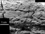 Crossbedding Evidence for Underwater Origin - C