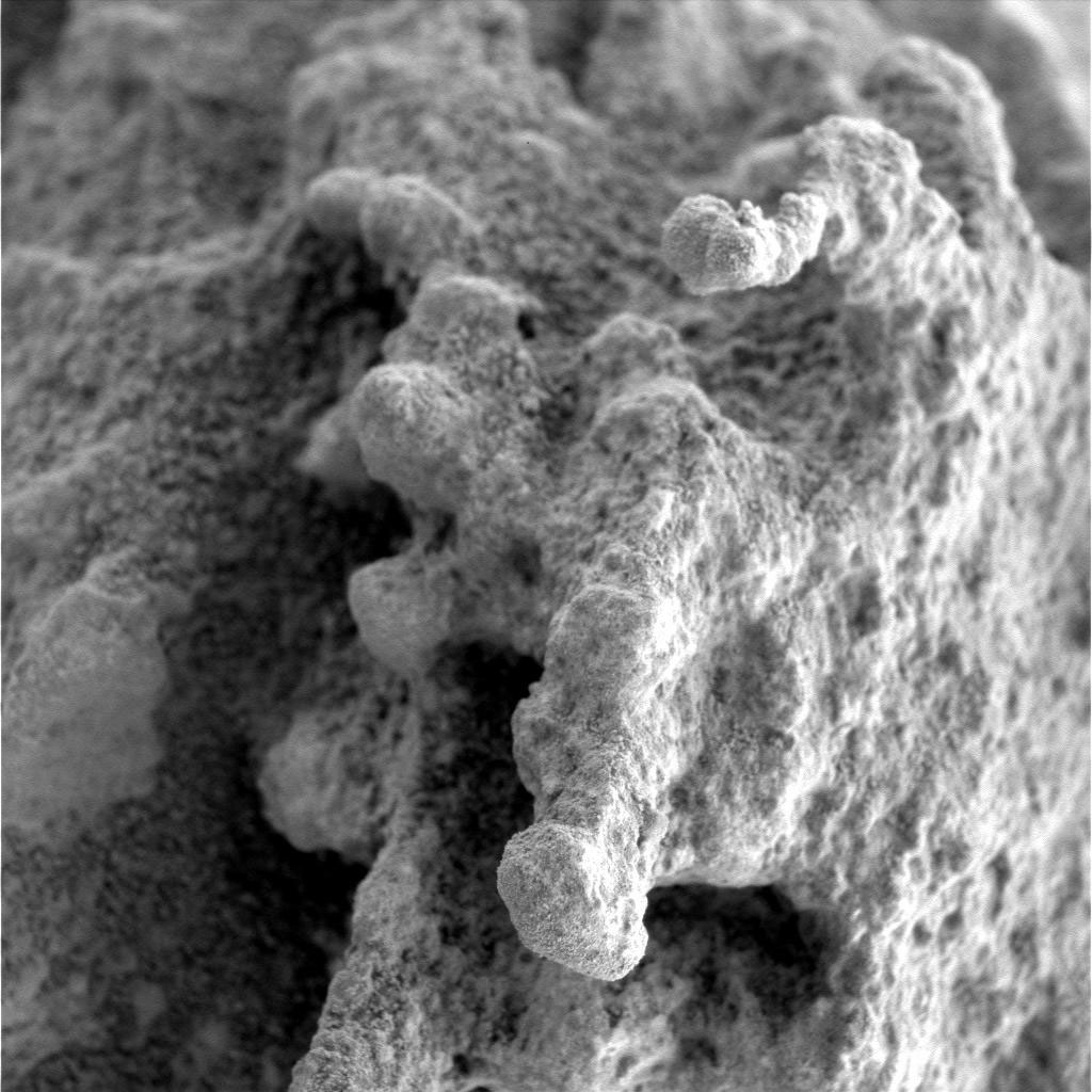 This black-and-white, microscopic image shows tiny, semi-angular knobs protruding upward from the pitted surface of a dusty rock. The field of view is about 3 centimeters (1.2 inches) square.