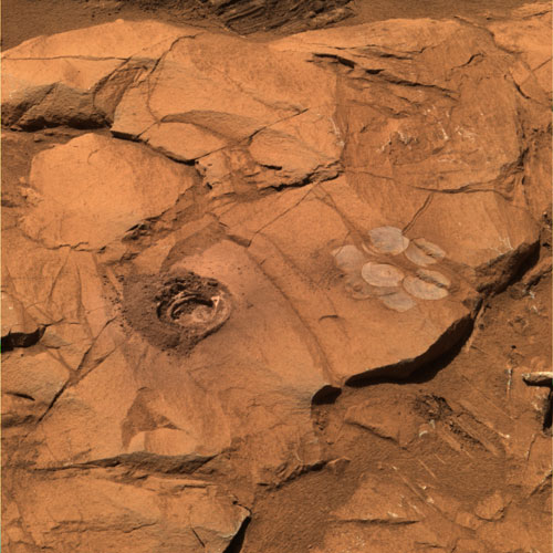 This image shows a rough-hewn, reddish-brown, upward-facing rock surface with a circular hole ground into it at center left. The hole is surrounded by a ring of fine dust. At right center is a flowerlike arrangement of seven circles, one in the middle surrounded by the other six, where the rover used the rock abrasion tool to brush dust away from the rock surface. At the very top edge of the image, the horizontal ridges of one of the rover's wheel tracks is visible in the sand next to the rock.
